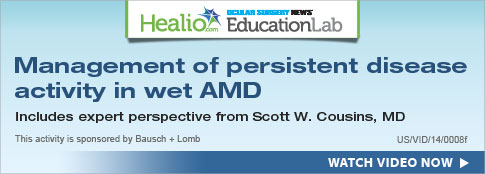 Management of persistent disease activity in wet AMD