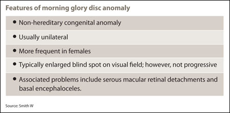 Features of morning glory disc anomaly
