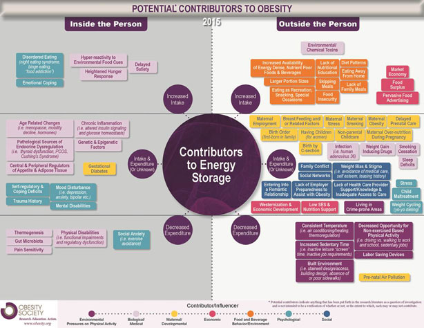 TOS infographic outlines potential causes, contributors for weight ...