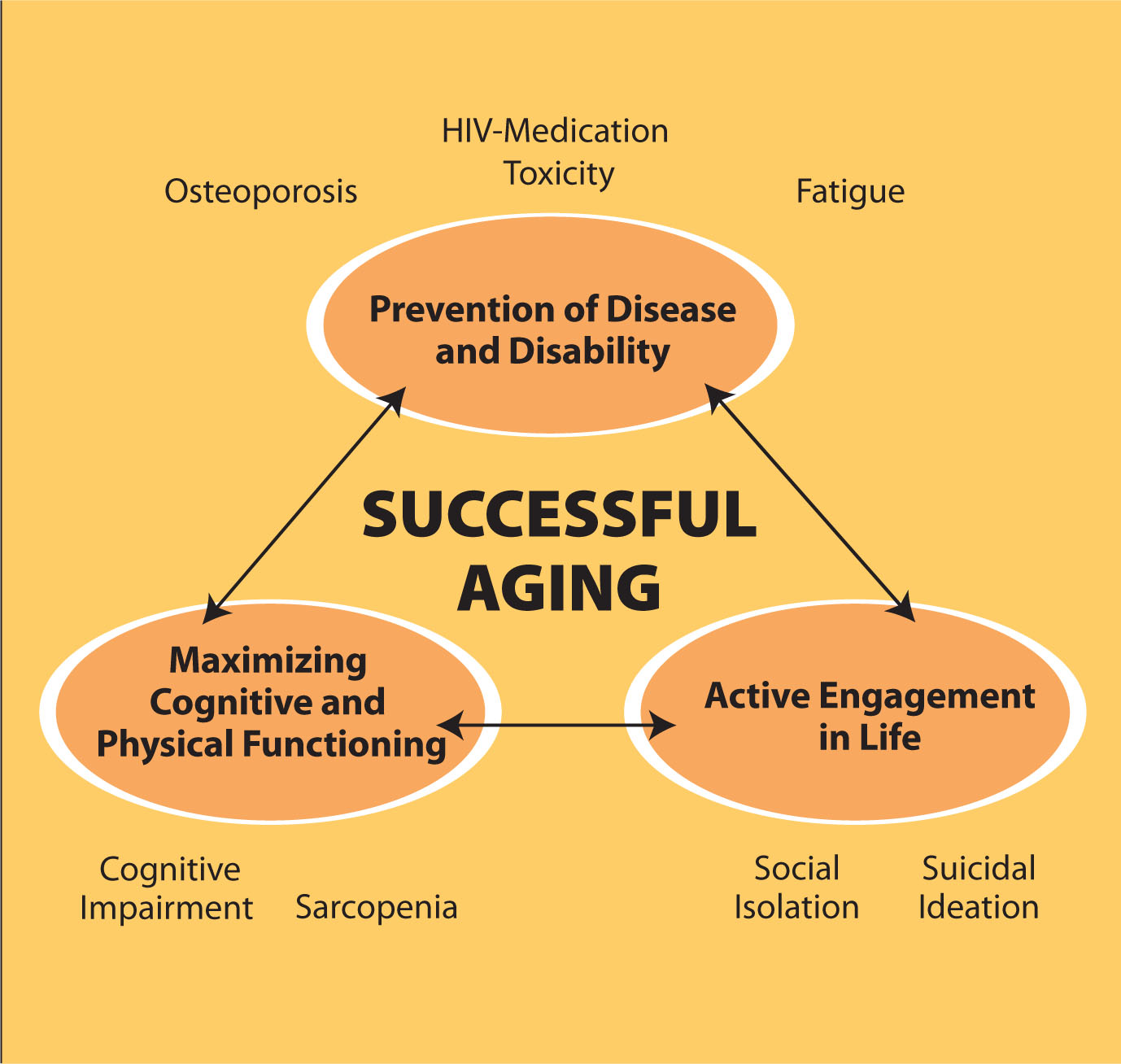 aging successfully Recently published articles from journal of aging studies.